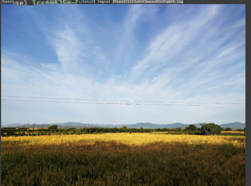 Mac & Linux preview pictures on the command line