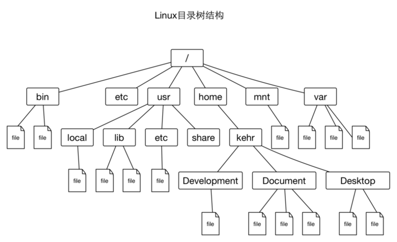 Introduction to Linux basic commands I: users and files