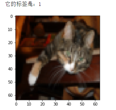 Numpy constructs a deep neural network to identify whether there is a cat in the picture