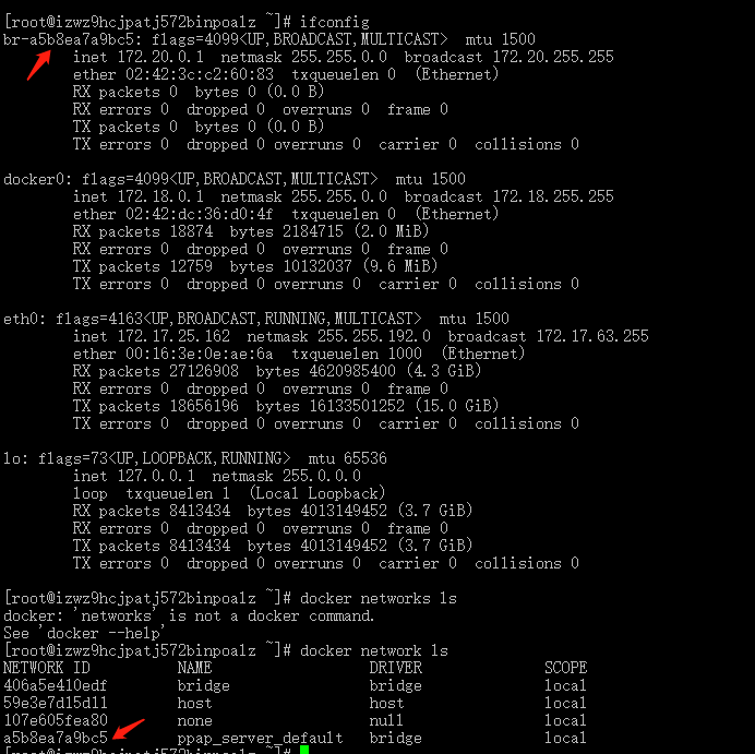 IP configuration of centos7 docker container accessing host
