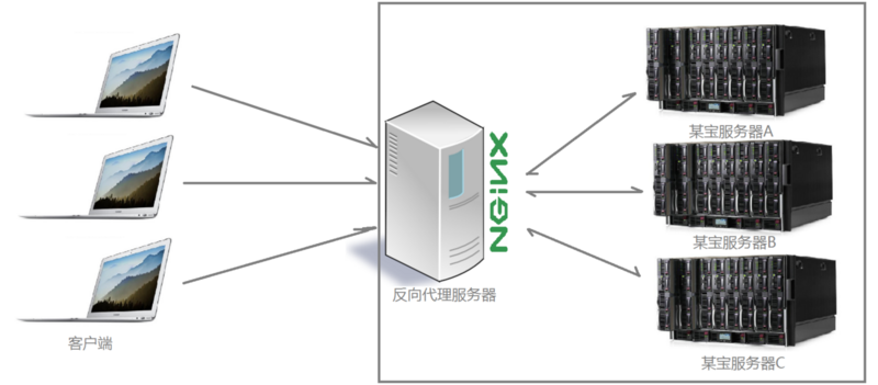 What is nginx? What can we do?