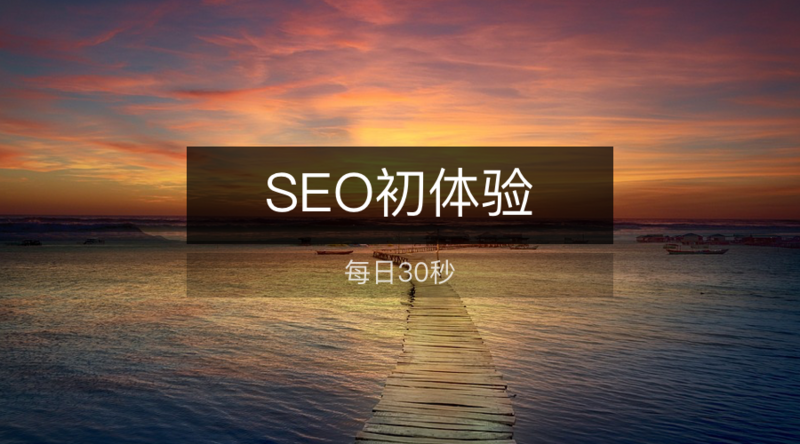 30 seconds per day First experience of SEO