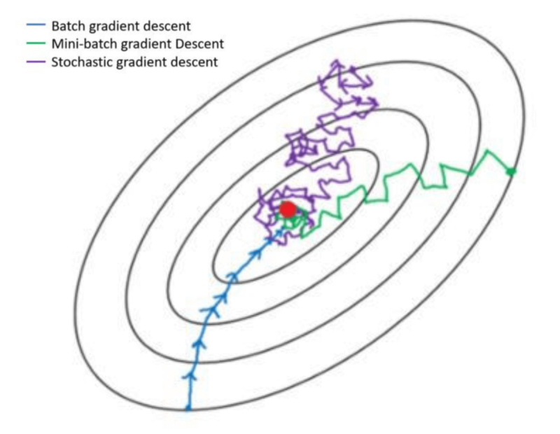 Differences of three gradient descent algorithms (bgd, SGD, MBGD)