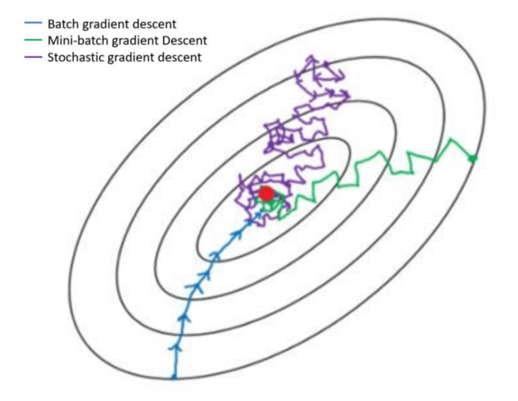 Difference of three gradient descent algorithms (bgd, SGD, MBGD)