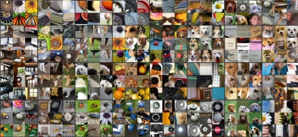 Neural networks are cute